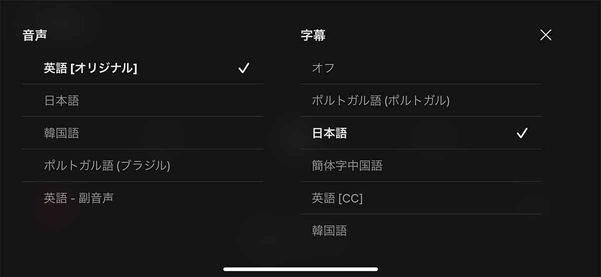 Netflixの音声と字幕