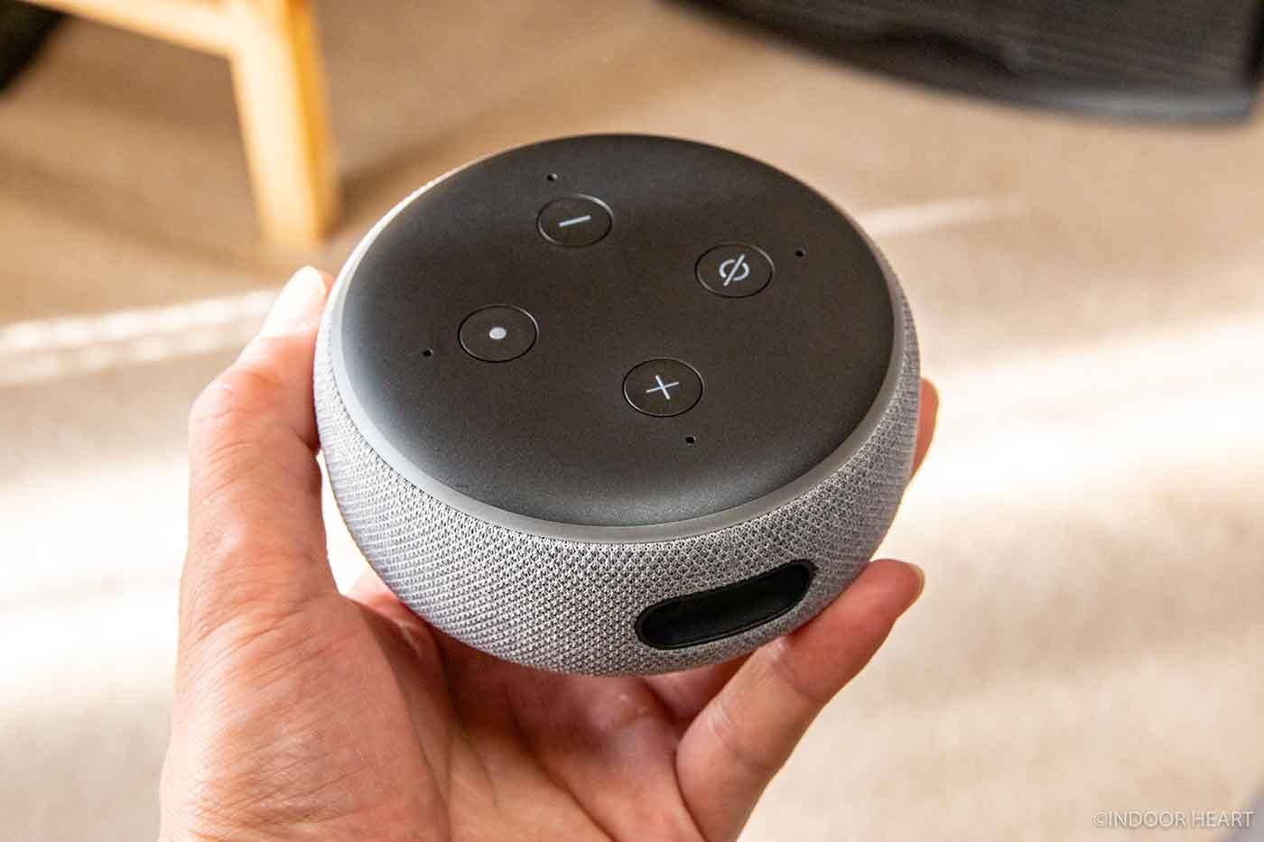 Echo Dotを手に持ったところ